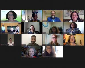 members of the IDEA Taskforce on Zoom